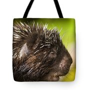 A Face Only A Mother Could Love Tote Bag