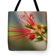 A Fairy Duster Is Born Tote Bag