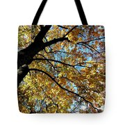 A Falling Maple Leaf Tote Bag
