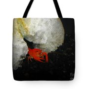 A Fancy Home Tote Bag