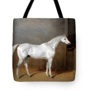 A Favourite Grey Horse Belonging To George Reed Standing In A Loose Box Tote Bag