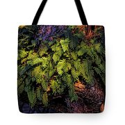 A Fern Botanical By H H Photography Of Florida Tote Bag