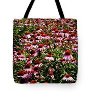 A Field Of Echinacea Tote Bag