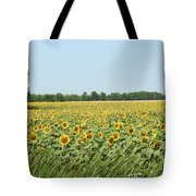 A Field Of Smiles Tote Bag