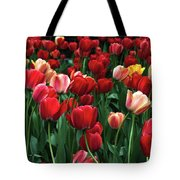 A Field Of Tulips Tote Bag