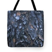 A Fire Scarred Tree Trunk Whose Thick Tote Bag