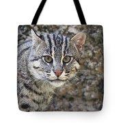 A Fishing Cat Portrait Tote Bag