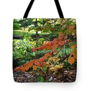 A Flame In The Forest Tote Bag