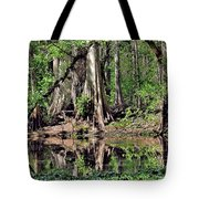 A Florida Riverine Forest 2 Tote Bag