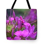 A Fly And A Flower Tote Bag