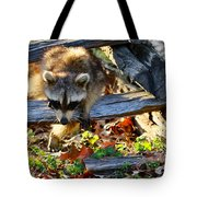 A Foraging Raccoon Tote Bag