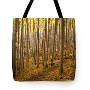 A Forest Of Aspens Tote Bag
