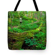 A Forest Stroll Tote Bag