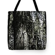 A Forest Walk Tote Bag
