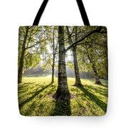 a Forest part 1 Tote Bag