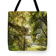 a Forest part 2 Tote Bag