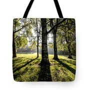 a Forest part 3 Tote Bag