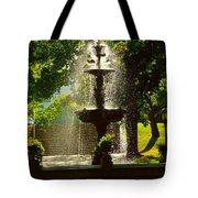 A Fountain In A St. Paul Park Tote Bag