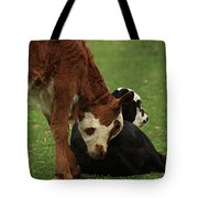 A Friend Indeed Tote Bag