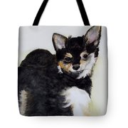 A Friend With A Smile  Tote Bag