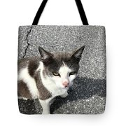 A Friendly Barn Cat Tote Bag