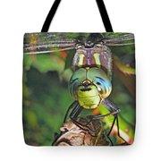 A Friendly Dragon Tote Bag