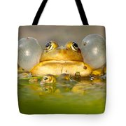 A Frog's Life Tote Bag by Roeselien Raimond
