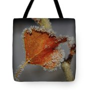 A Frosted Leaf  Tote Bag