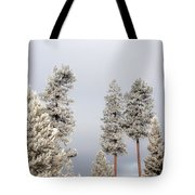 A Frosty Morning 2 Tote Bag