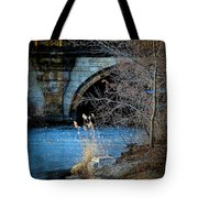 A Frozen Corner In Central Park Tote Bag by Chris Lord