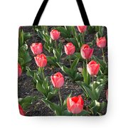 A Garden Full Of Tulips Tote Bag