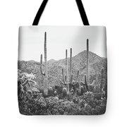 A Gathering Of Cacti Tote Bag