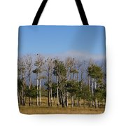 A Gathering Of Crows Tote Bag