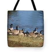 A Gathering Of Geese Tote Bag