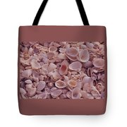 A Gathering Of Sea Shells In Sanibel Tote Bag