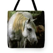 A Gentle Old Soul Tote Bag