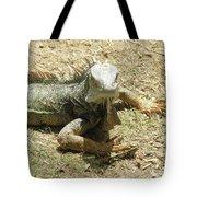 A Glaring Common Iguana On Aruba's Wild Side Tote Bag