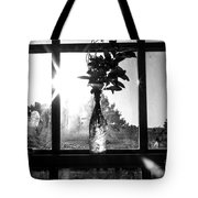 A Glass Bottle On A Windowsill Tote Bag