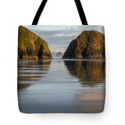 A Glossy Beach Tote Bag