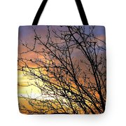 A Glorious Sky Tote Bag