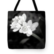 A Glowing Daffodil Tote Bag