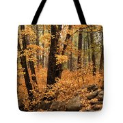 A Golden Autumn Forest  Tote Bag