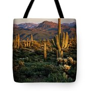 A Golden Sonoran Evening  Tote Bag