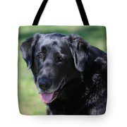 A Good Dog Tote Bag