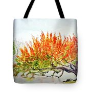 A Graceful Bow Tote Bag