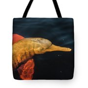 A Graceful Turn Tote Bag