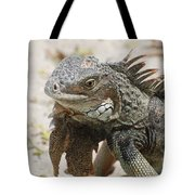 A Gray Iguana With Spines Along It's Back Tote Bag