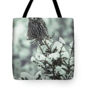 A Great Gray Owl Strix Nebulosa Perches Tote Bag