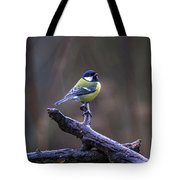 A Great Tit In The Rain Tote Bag
