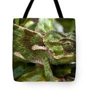 A Green Chamaeleonidae Tote Bag